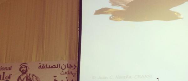 Colombia en Festival Internacional de Halcones en Abu Dhabi